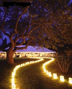 candel bags so pretty, for a wedding or a outdoor party. Love the light decoration