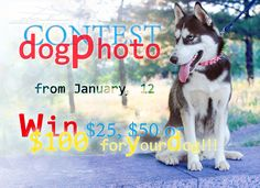 #Dog #Photo #Contest is coming!!!! From January, 12 add your favorite #dog pictures and win $25, $50 or $100 for your beloved friend! Follow our Facebook news! https://www.facebook.com/fordogtrainer/app_515720611858523 Click on the picture to know more information!