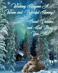 christmas eve good night quotes & good night on christmas eve Good Night Qoutes, Good Morning Quotes, Christmas Quotes, Christmas Art, Christmas Items, Christmas Greetings, Xmas, Beautiful Good Night Images, Beautiful Pictures