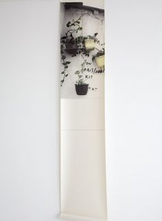 trompe lil hall 2 etg