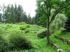 Liptovský Hrádok - Arborétum 5