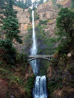Multnomah Falls near Portland, Oregon is very similar to waterfalls in the Andes Mountains of South America as well as the Pyrenees Mountains of Europe. Description from gardennaturally.wordpress.com. I searched for this on bing.com/images