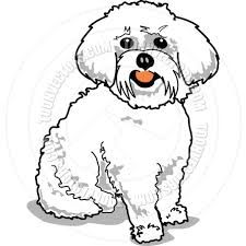 Maltese Puppy Pattern for Stained