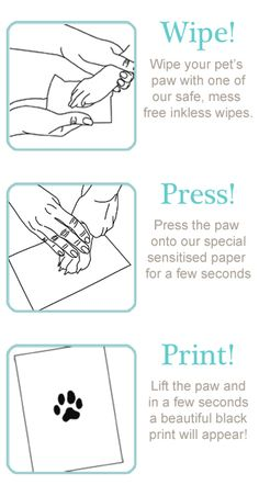 Taking your pet's paw print is easy!! Wipe-Press-Print. Find out more from www.silverpetprints.com.
