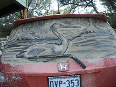 Scott Wade Makes Wonderful Art From Dusty Car Windows - Scott wade makes wonderful art dusty car windows