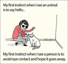 Im just a little bit awkward.