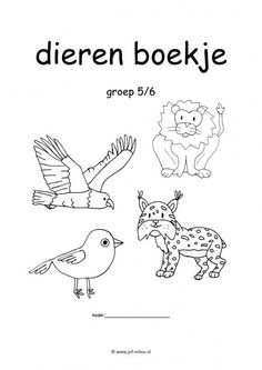 Werkboekje dieren Craft Activities For Kids, Colouring Pages, Homeschool, Teaching, Fictional Characters, Jungle Thema, Art, Third, Middle
