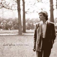 David Sylvian 'Brilliant trees'. An album cover worth framing.