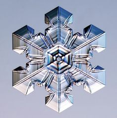 microscope image of snowflake by captured by Kenneth G. Libbrecht, CalTech
