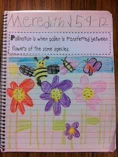 Great idea for notebooking in any subject!  Print vocab on strips; then students cut, paste, and illustrate in journal.