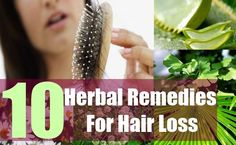 10 Herbal Remedies for Hair Loss http://herbsandoilshub.com/10-herbal-remedies-for-hair-loss/  If you're suffering from thinning hair or hair loss, this post may help you.