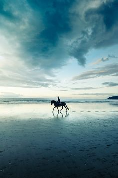 Horse and rider, Source : http://weheartit.com/entry/80756703
