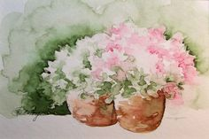 Pink and White Flowers in Terra Cotta Flower Pots Watercolor Painting.