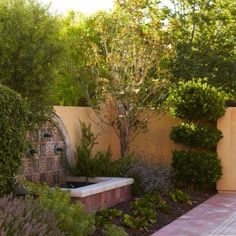 Pretty courtyard. Desert landscaping.