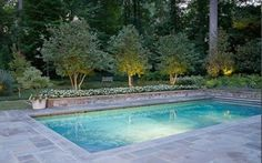pool with bluestone patio