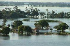 Lago Grande do Curuai, Santarém - Parà