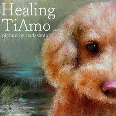 PCペイントで絵を描きました! Art picture by Seizi.N:   またまた愛犬ティアモを、フカフカの毛並みにお絵描きしてみました。  How Pets Improve Your Mood http://youtu.be/4QWu1OJCmMA