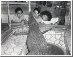 Nostalgia, Cadiz, Places To Visit, Spain, Painting, Portrait, Valencia Spain, Vintage Photos, Crocodiles
