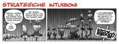 Strategiche Intuizioni