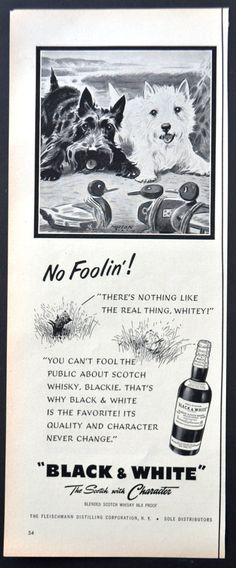 1952 Black & White Blended Scotch Whisky Vintage Print Ad - Scottish Terriers