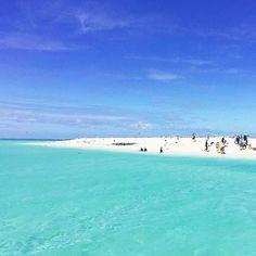 HAPPY Wednesday guys!!  dreaming of Great Barrier Reef cc: @antilockbrake #Kulasafari by kulafoods http://ift.tt/1UokkV2