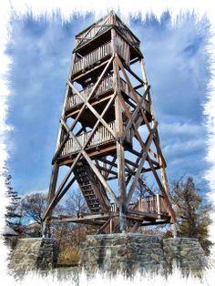 wieza obserwacyjna jako atrakcja turystyczna - Google Search Lookout Tower, Shotgun, Guns, Cabin, Treehouse, Rifles, Towers, Travel, Google