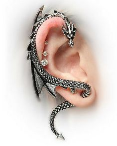 Let A Dragon Be Your Guide: Dragon Ear Wrap Ear be dragons! This Dragon Ear Wrap is just about the coolest piece of jewelry ever. This gleaming reptile curves around your ear and whispers all of his secrets and magical advice just to you. Ear Jewelry, Cute Jewelry, Jewelry Accessories, Body Jewelry, Jewelry Box, Steel Jewelry, Unique Jewelry, Women Accessories, Gothic Earrings