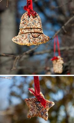 Decorate Trees with Birdseed Ornaments | Click Pic for 21 DIY Christmas Outdoor Decorations Ideas | Front Porch Christmas Decorations