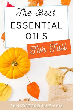 Want your home to smell like all of the amazing fall scents? Try these fall essential oil blends and you will be ready for the season! Replace those fall candles with these natural essential oils. You will love the blends of cinnamon, eucalyptus, cedarwood, and more. Whether you love spicy essential oils that woodsy feel, there are options for you! Fall Essential Oils, Plant Therapy Essential Oils, Making Essential Oils, Cedarwood Essential Oil, Natural Essential Oils, Essential Oil Blends, Warm Apple Cider, Spiced Cider, Natural Air Freshener