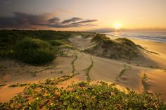 "Landscape shot of a beautiful sunrise at Mtunzini beach along the KZN North Coast entitled ""Mtunzini Sunrise"" by DK Photography on Outdoorphoto Weekly Choice Galleries Dk Photography, Outdoor Family Photography, Landscape Photography, Sa Tourism, Urban Setting, Beautiful Sunrise, Countries Of The World, South Africa, Country Roads"