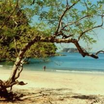 Playa Manuel Antonio, viaje costa rica 1994, My first love is animals, nature, children, they manifest real love and intelligence, showing us the right path, there is not such thing as the big bang, life has been there always in different disguises and black holes are in fact sun universes,   https://stargate2freedom.wordpress.com/2016/05/03/cruelty-to-animals-is-a-fact/, http://www.facebook.com/blueskyinfinito,