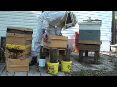 Adding a super to a Warré hive