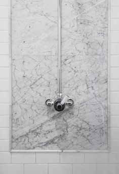 Marble in shower with tile. Marble trim also around top of tile wainscoting and for sink top. Shower floor too?