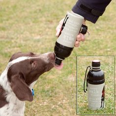 Smart features make this dog water bottle great for travel or hiking.