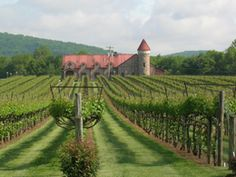 Horton Vineyards, Gordonsville, VA.  Was just there with my mother... lovely place.