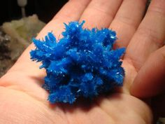 Pentagonite specimen Ian found this gorgeous Pentagonite specimen from Poona, India. This specimen was collected only a few weeks ago. It was on the booth of Wilke Mineralien.   Pentagonite specimen A gorgeous and delicate Pentagonite specimen.