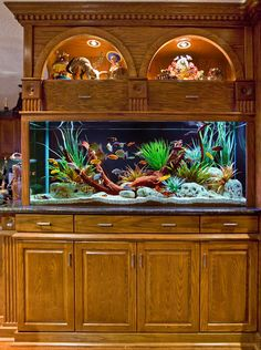 built in saltwater tank | Custom Built-In Aquarium and Cabinetry | Decorative Freshwater