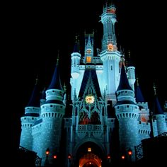 Disney World! Can't wait to bring Kinley..when she is old enough to appreciate it!