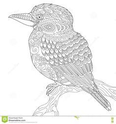 Zentangle Stylized Kookaburra Bird Stock Vector