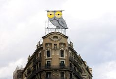 I MUST SEE THIS IN REAL LIFE. Owl lover