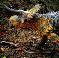 Fan photo of our Nasutoceratops! We love when our fans bring our figures to life through photography!