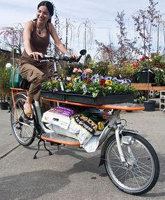 Pallet bike what?