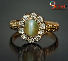 An Antique Cat's Eye Chrysoberyl and Diamond Gold Ring circa 1880 The ring is centered with a cabochon cut chrysoberyl with a bold cat's eye effect - Diamond Cluster Ring, Gold Diamond Rings, Diamond Cuts, Gold Rings, Victorian Jewelry, Antique Jewelry, Cats Eye Ring, Cats Eye Stone, Stud Earrings
