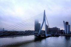 Le Pont Erasme by nic( o ), via Flickr