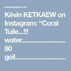 "Kévin KETKAEW on Instagram: ""Coral Tuile...!!! water...........................80 goil................................30 gflour.............................10…"" • Instagram"