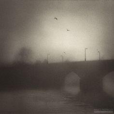 Untitled by Matt Pringle Medium Format Photography, Thomas Merton, British Columbia, Stirling Scotland, Film, Outdoor, Birds, Art, Fotografia