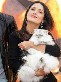 Salma Hayek et son chat. Salma Hayek, Crazy Cat Lady, Crazy Cats, I Love Cats, Cool Cats, Game Mode, Celebrities With Cats, Animal Gato, Cat People