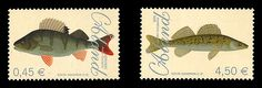 Two set of stamps featuring different fishes. The stamps feature the Perch (0.45) and the Zander (4.50). This stamp edition was issued by Aland in 2008. #fishes #aland #stamps http://www.wopa-stamps.com/index.php?controller=country&action=stampRelatedIssue&id=385