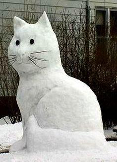 8 foot Snowcat: