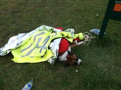 New home for #Boxer cross left bound in car park